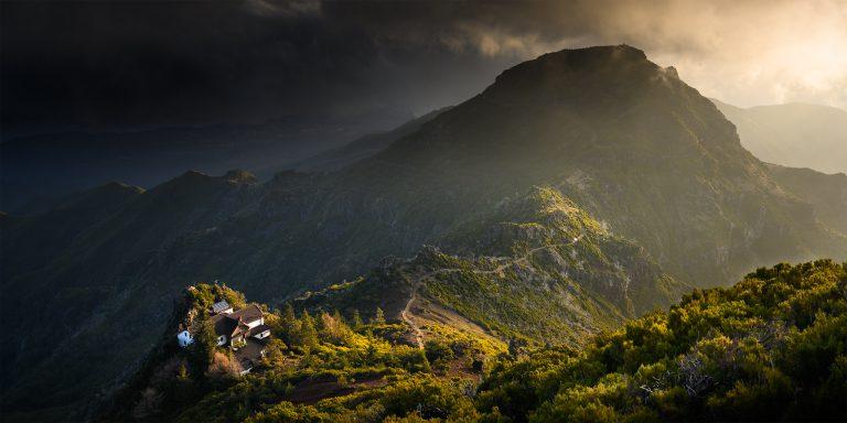 Madera: 50 odcieni zieleni